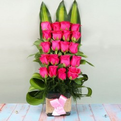 Divine Pink Roses